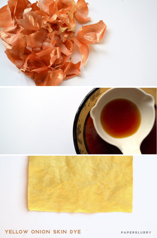 natural dyeing with yellow onion skins, on paper